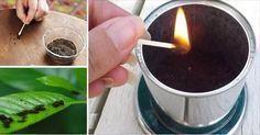 Ogni anno migliaia di chilidi fondi di caffèsono buttatinella spazzatura senza realizzare che invece possono essere usati in tanti utilissimi modi evita