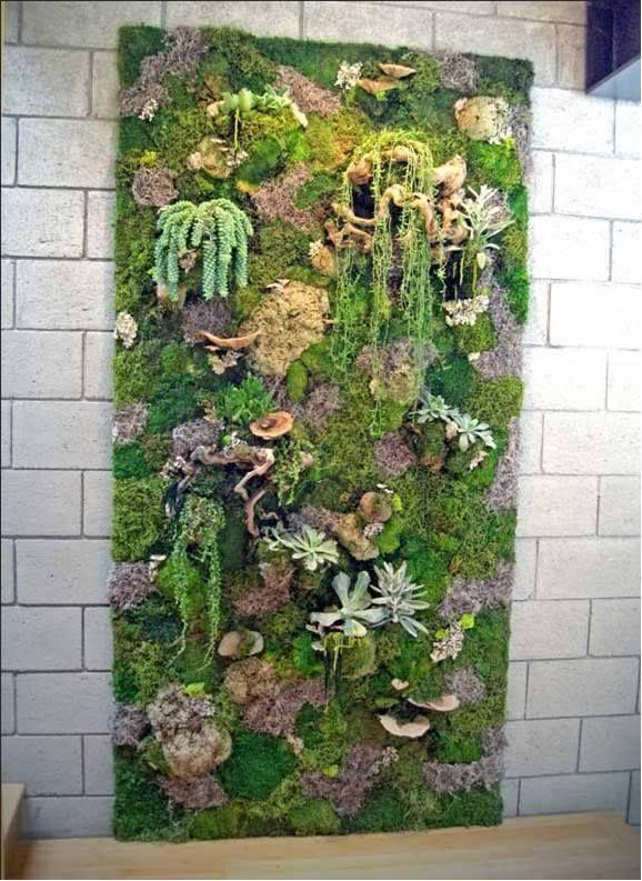 172 mejores im genes sobre jardines verticales en for Jardines de soraya