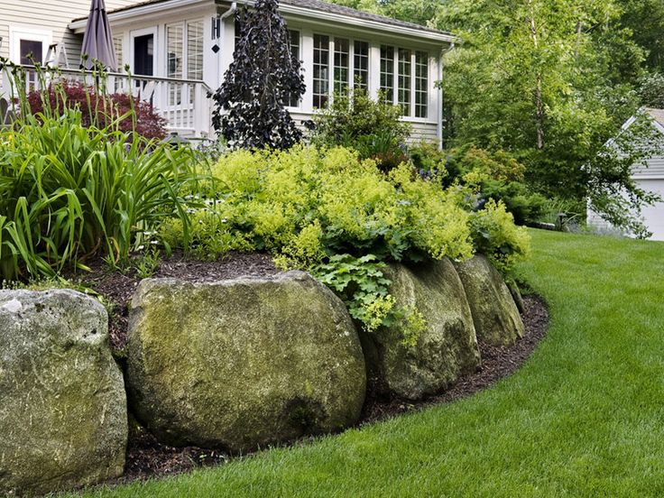 Boulder  Retaining  Wall  with  Lady's  Mantel