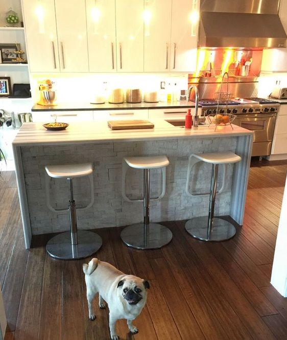 Pet Friendly Decorating Flor Carpet Tiles: 33 Best Pet Friendly Flooring Images On Pinterest