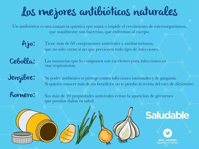 Los mejores antibioticos naturales
