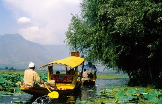 Plus à l'ouest, dans la région du Cachemire, les paysages changent et se chargent d'étangs et de jardins, à l'image de la ville de Srinagar construite sur l'eau.