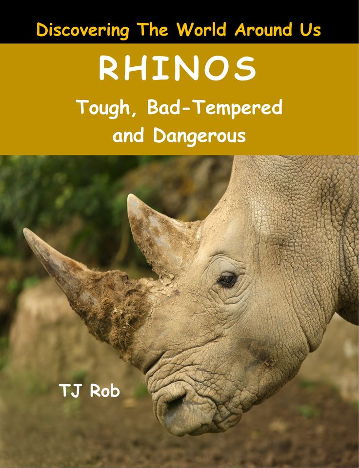 What looks like a prehistoric creature, runs as fast as horse and is so short sighted it can't see objects more than 10 feet away? A Rhino. Rhinos are Tough and yet endearing creatures! #rhino #endangered #kidsbooks