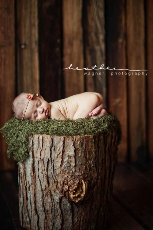 Like this idea as a in studio prop, but could also be cool if a client had a stomp in there backyard.... (Then I could take the child's photo on that stomp for years to come. It looks prettier then it sounds...)