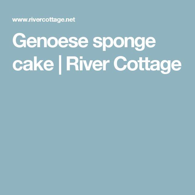 Genoese sponge cake | River Cottage