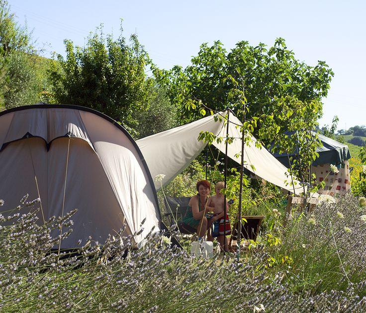 kamperen bij de boer de marken italie