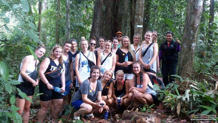 During their Sandakan visit, the group visited the peaceful Rainforest Discovery Centre, where they found a variety of flora and fauna!
