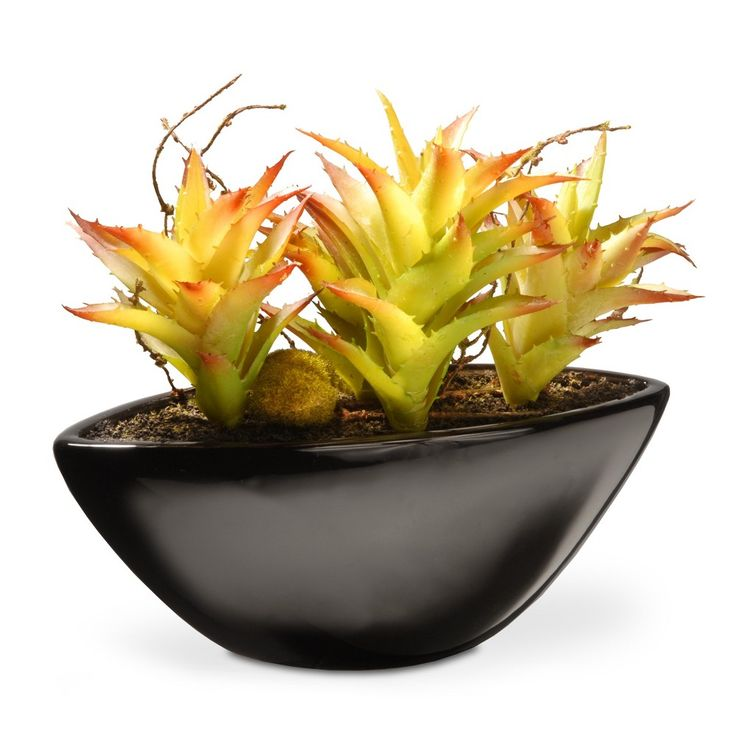 Artificial Succulent Plant Green 9.8 - National Tree Company