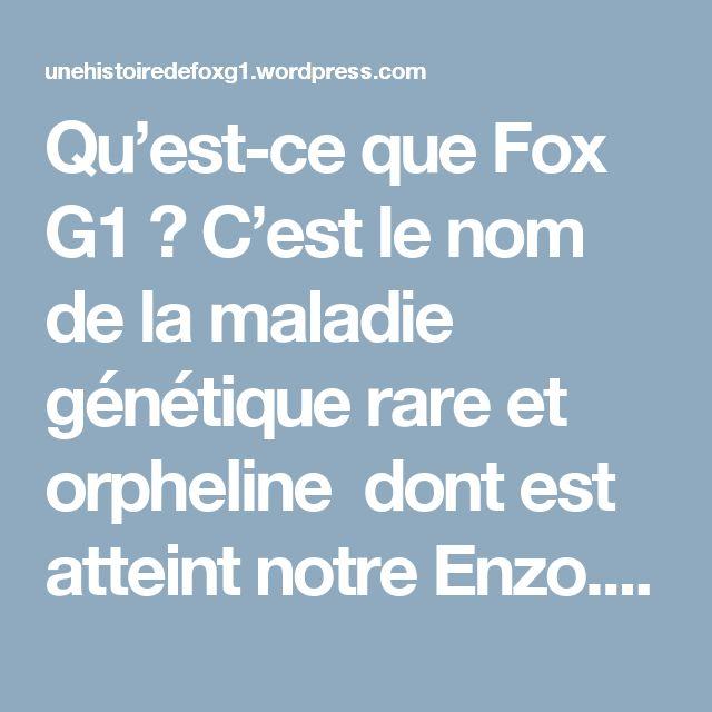 Qu'est-ce que Fox G1 ? C'est le nom de la maladie génétique rare et orpheline dont est atteint notre Enzo.La fondation internationale FoxG1recense 260 enfants* dans le monde atteints du FoxG1 (+1 avec Enzo).