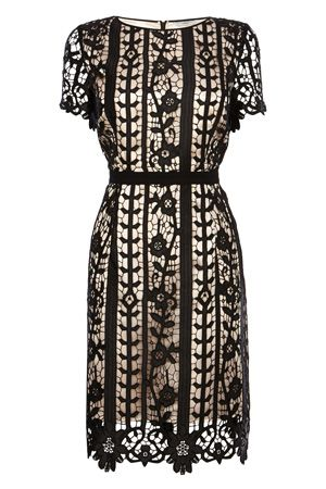 Lace Dresses & Outfits   Other GRESSIA LACE DRESS   Coast Stores Limited
