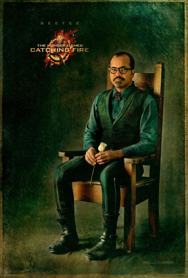 Hunger Games CATCHING FIRE - Beetee Victory Portrait