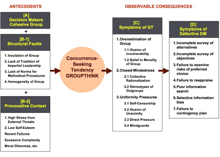 Groupthink case study
