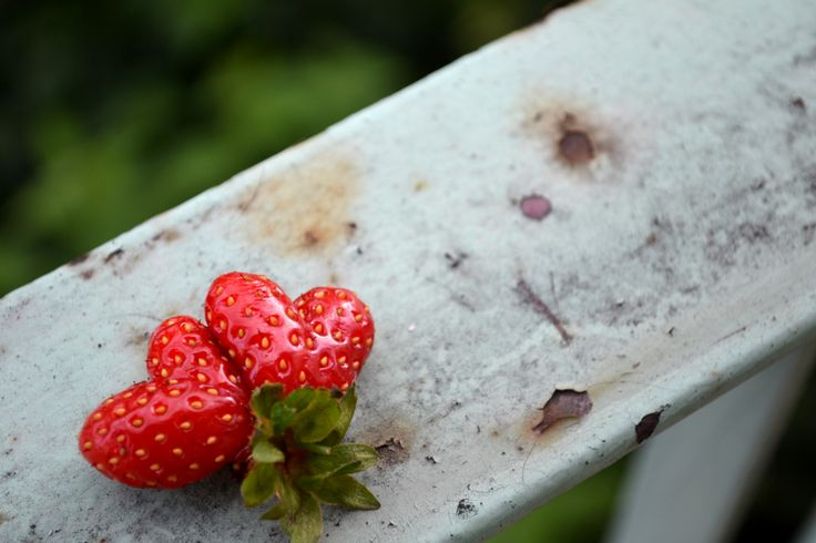 stravberry love <3