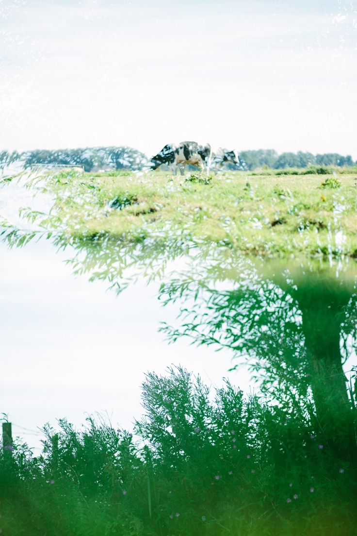 Double exposure landscape    Mini vakantie II » Oh Beautiful World | Wedding & Lifestyle Photography