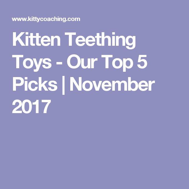 Kitten Teething Toys   Our Top 5 Picks (Jan 2018)