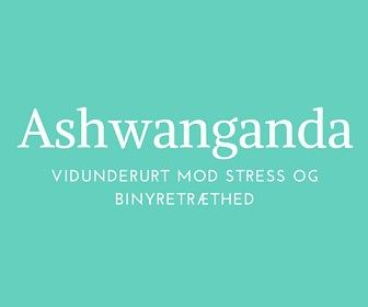 Ashwanganda - Din must eat urt ved stress og binyretræthed