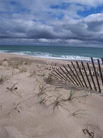 Nantucket, MA: Beautiful beaches!