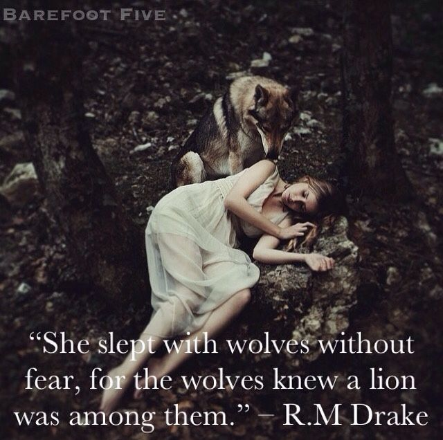 """""""She slept with wolves without fear, for the wolves knew a"""
