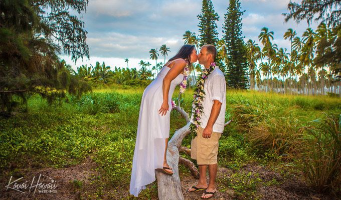 64 best images about ali 39 i kauai wedding locations on for East coast wedding destinations