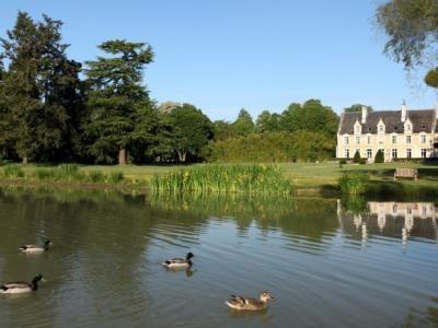 Seillac situé à 18 km de Blois ville d'art et d'histoire est également à proximité du Zoo de Beauval, une étape incontournable de votre séjour, Les attractions les plus populaires dans le cœur du département du Loir et Cher sont les splendides châteaux comme le Château de Blois, le Château de Chambord le plus visité de tous, le château de Chaumont-sur-Loire et le Château de Cheverny. En savoir plus sur…