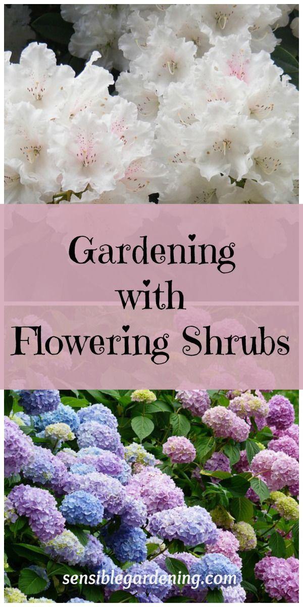 Gardening with Flowering Shrubs at Sensible Gardening