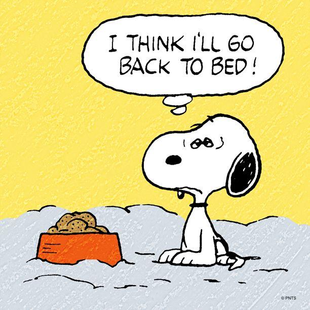 34 Best Peanuts - Sleep/ Night Images On Pinterest