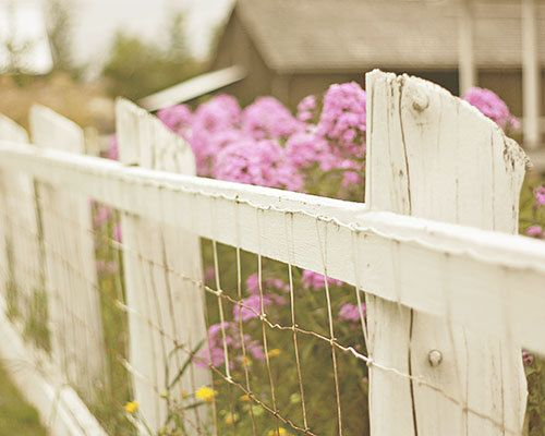 188 best Fences & Gates images on Pinterest | Garden fences, Garden ...