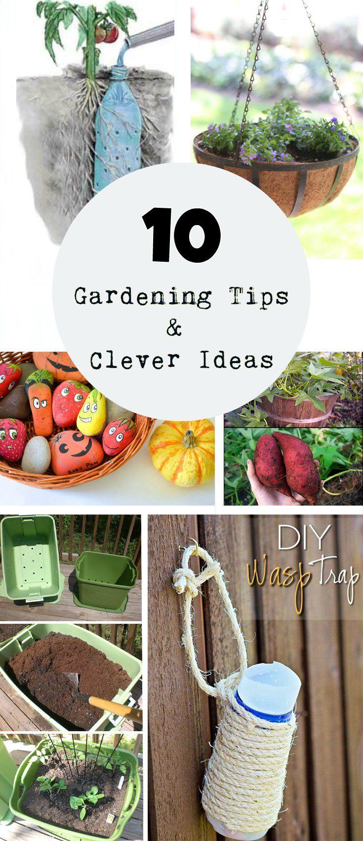 best gardening tips u tricks images on pinterest landscaping