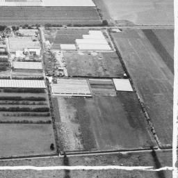 The A. G. West and Co Nurseries, Cottingham, 1948. This image was marked by Aerofilms Ltd for photo editing. | Britain from Above