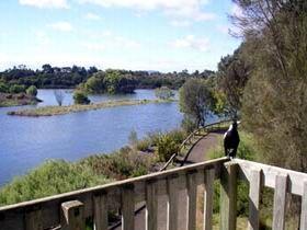 Lake McIntyre, Millicent, Limestone Coast, South Australia