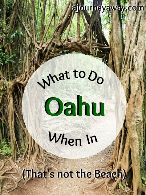 What To Do In Oahu (That's Not The Beach