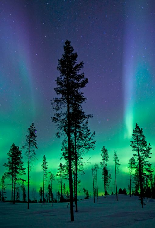 """Kiruna, high above the Arctic Circle, is a Mecca for northern lights aficionados."" Northern Lights; www.bradtguides.com"