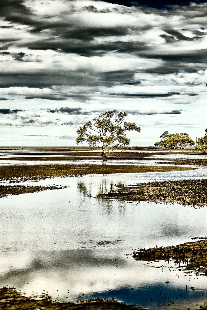 Nudgee Beach, Brisbane, QLD, Australia - Zac Harney Photography