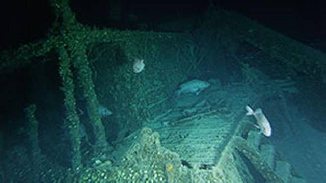 Nicaraguan-flag SS Bluefields merchant ship sunk off North Carolina during WW II.
