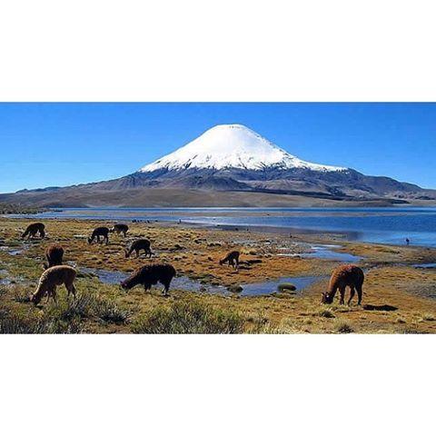 La zona norte de Chile se caracteriza principalmente por su desierto, uno de los más cálidos del mundo, clima árido, mar y la Cordillera de los Andes cubierta de escasa nieve en su cumbre, estos forman parte de su principal atractivo turístico. Posee play