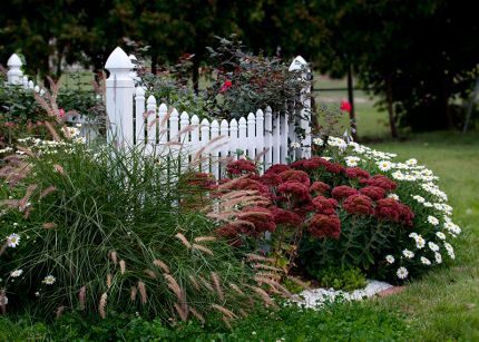 love the picket fence in the flower bed