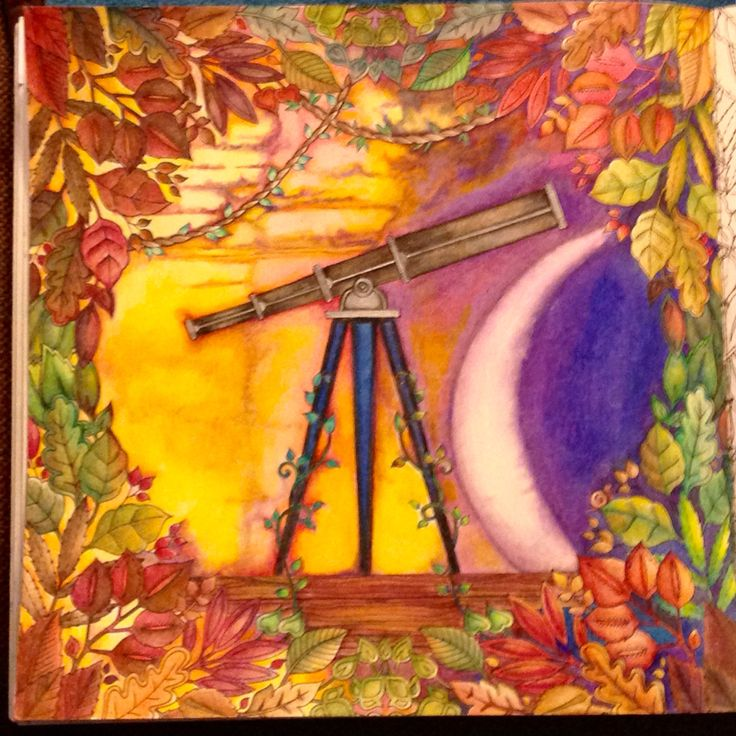 25 Best Johanna Basford Telescope Oo Images On Pinterest