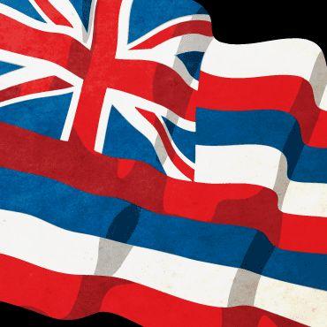 Hawaiian Flag - TheVectorLab.com