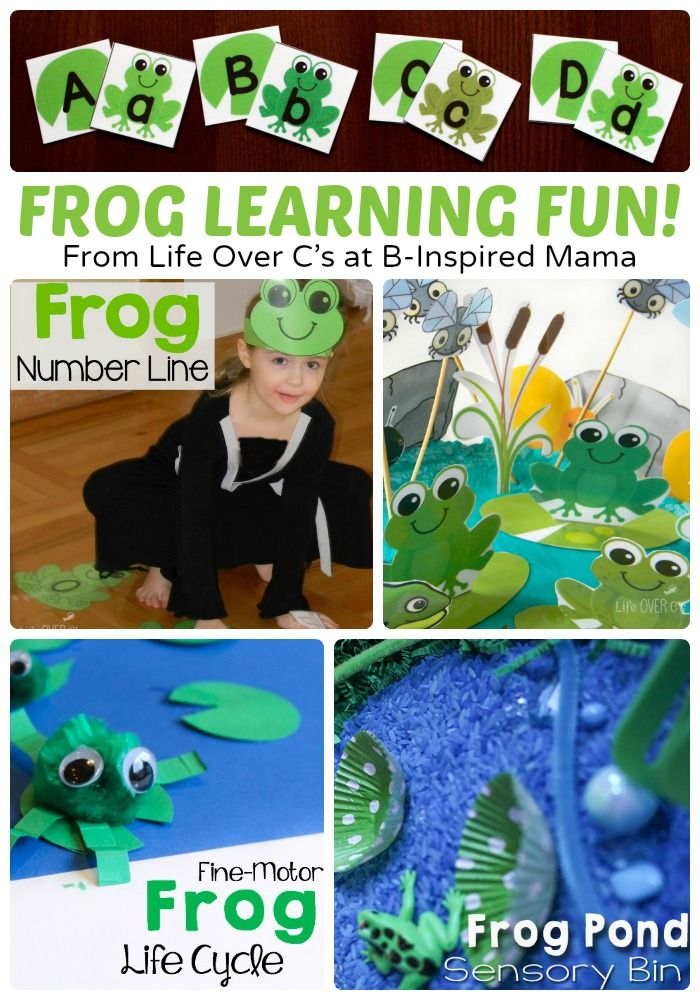 Preschool Frog Themed Learning and Alphabet Activities + Free Printables, too! at B-Inspired Mama