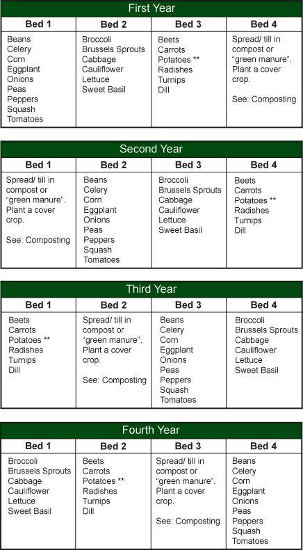 crop rotation chart: Best 25 crop rotation ideas on pinterest companion planting