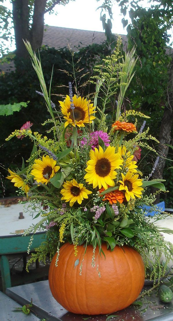 Two of my favourites: pumpkin and sunflowers . . beautiful!
