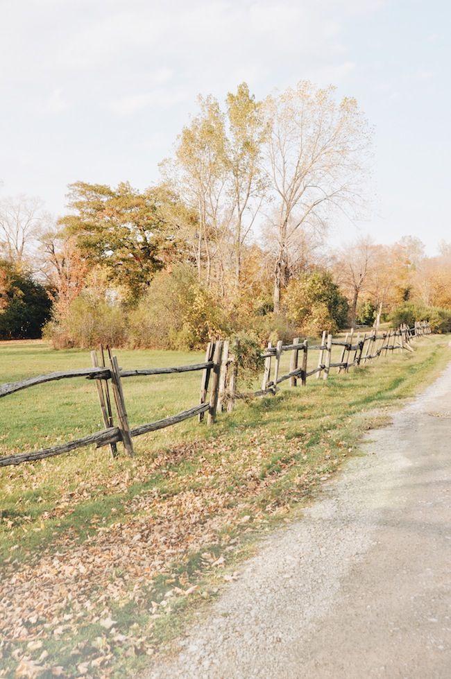 Fall in Canada | lark & linen