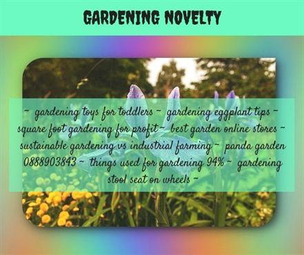 Les 1265 meilleures images du tableau Small Herb Gardens sur Pinterest