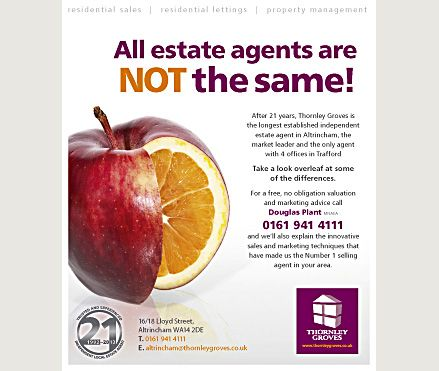Not All Estate Agents Are The Same Use This Flyer Design
