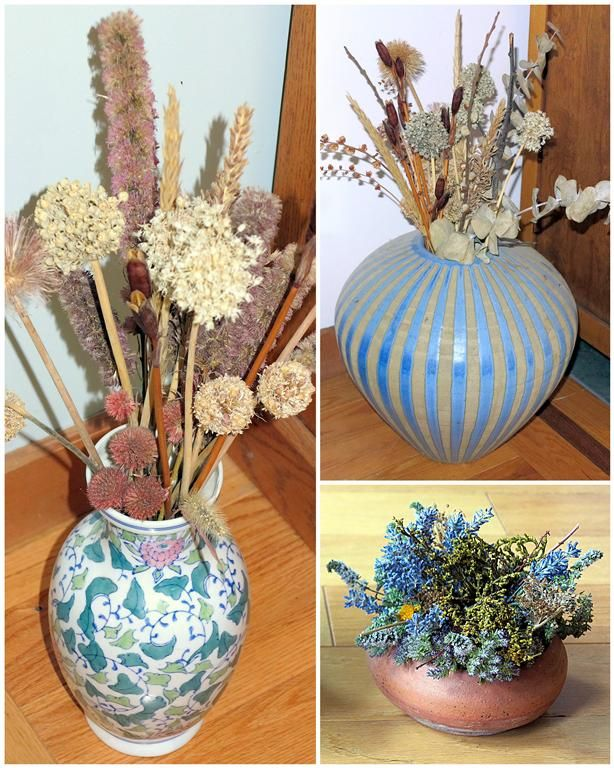 109 best dried flowers and fruits great for crafts and for Dried flowers for crafts