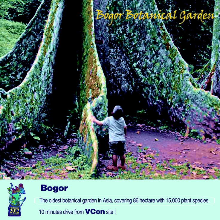 Bogor Botanical Garden, 10 minutes drive from #VIND12 location - experience Indonesia!