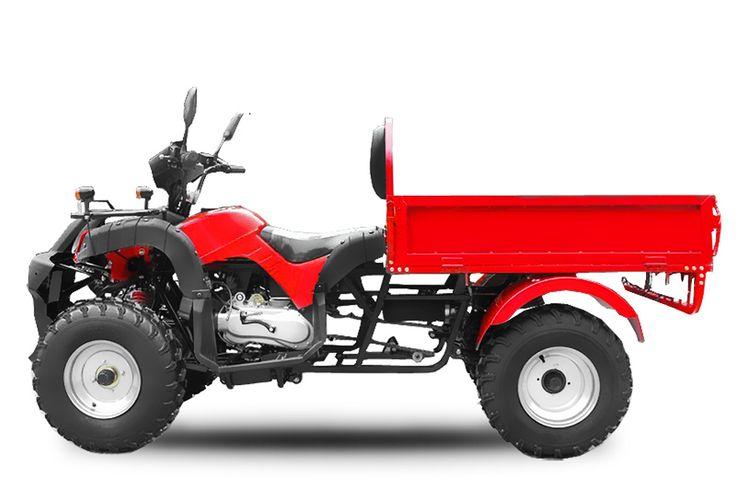 ATV 200cc DUMPER Automatik + RG | CVT Getriebe | Ladefläche |