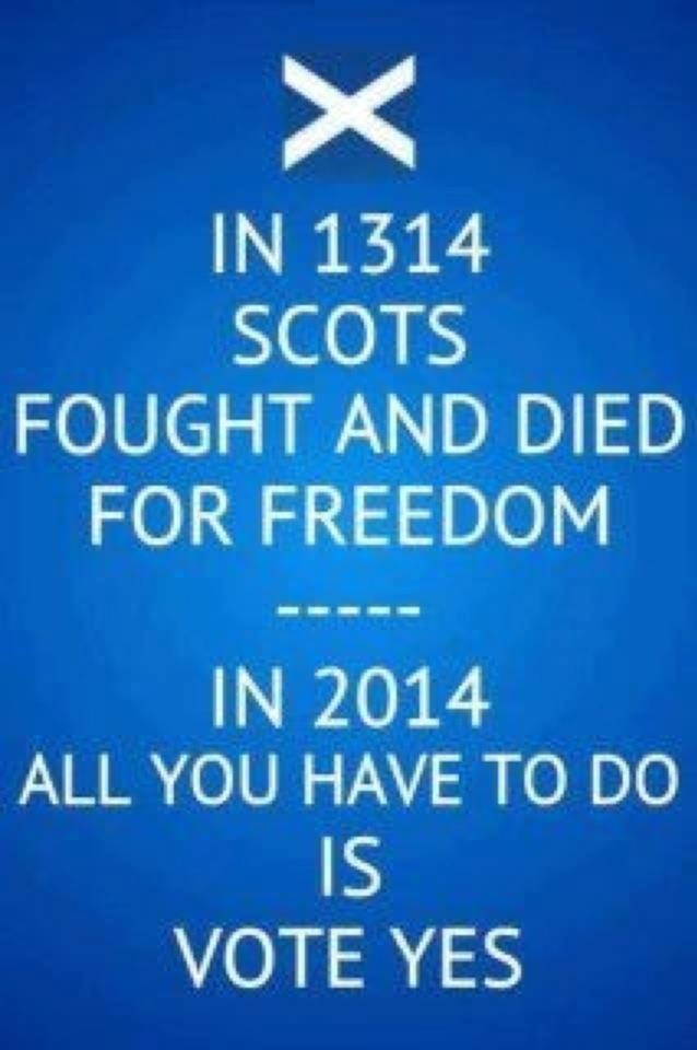 best scottish independence images plaid scotch  the scottish government have already decided on your behalf that should scotland gain independence it will re join the eu they didn t debate or ask you