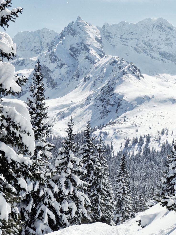 Dolina Gąsienicowa #poland #polska #malopolska #zakopane #mountain #tatry #place #gąsienicowa #winter #zima #destination