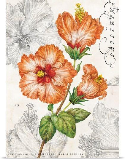 Flor: